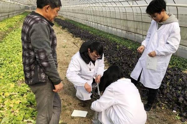 农技中心土壤检测配套仪器建设方案