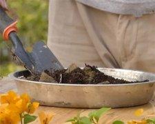 土壤养分分析不同方法的比较