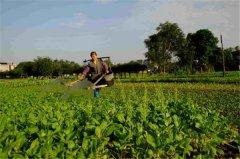 土壤水分速测仪的工作原理是什么?