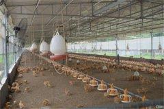 土壤水分速测仪监测土壤水分变化